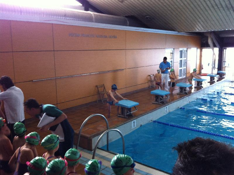 Nataci jornada festiva de nataci pels m s petits al for Piscina martorell